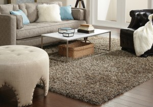 Stanton carpet plush bling
