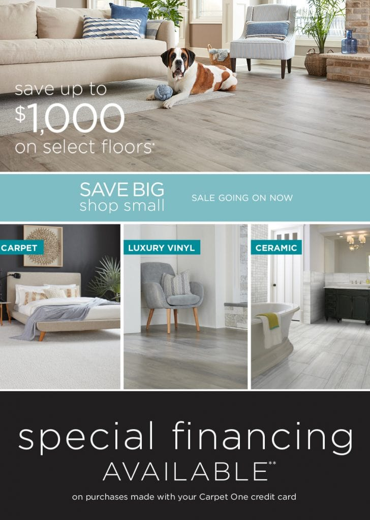 Save up to $1000 during our Save Big, Shop Small sale